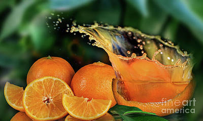 Photograph - Orange Splash by Shirley Mangini
