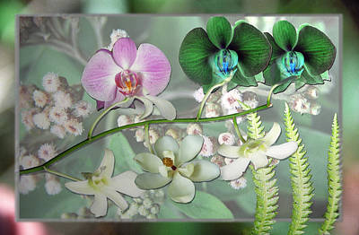 Digital Art - Orchid Montage by Richard Nickson