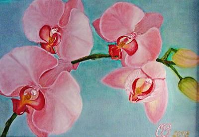 Orchid Print by Olga Vlasova