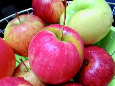 Photograph - Organic Apples by Man Chong