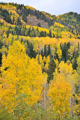 Photograph - Owl Creek Fall Colors by Ray Mathis