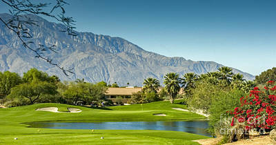 Palm Desert Golf Course Art Print by David Zanzinger