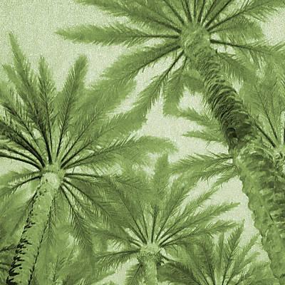 Digital Art - Palm Trees On My Mind by Stephanie Agliano