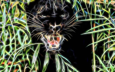 Panther Mixed Media - Panther Collection by Marvin Blaine