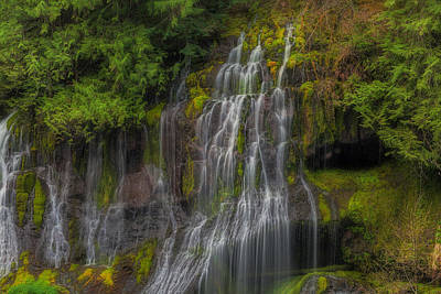 Stream Photograph - Panther Creek Falls by David Gn