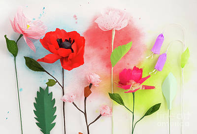 Crepe Paper Photograph - Paper Flowers And Watercolors by Elisabeth Coelfen