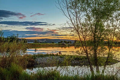 Photograph - Peaceful by Robert Bales