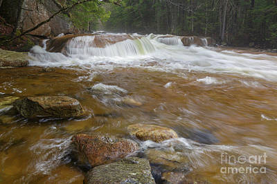 Photograph - Pemigewasset River - Franconia Notch State Park New Hampshire by Erin Paul Donovan