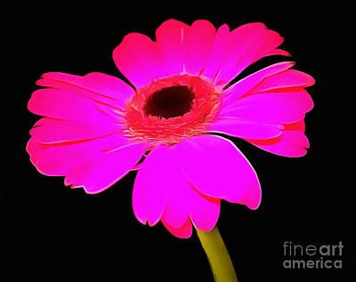 Perfectly Pink  Art Print by Krissy Katsimbras