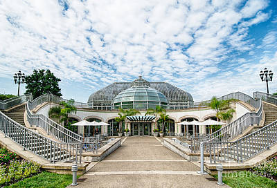 Phipps Conservatory Pittsburgh Pennsylvania Art Print by Amy Cicconi