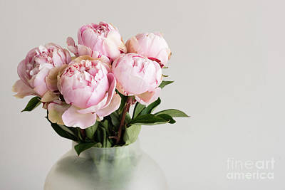 Photograph - Pink peonies by Natalie Board