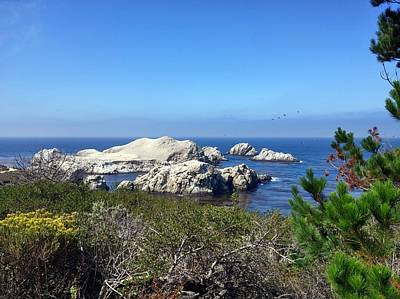 Photograph - Point Lobos Coastal Landscape by Richard Yates