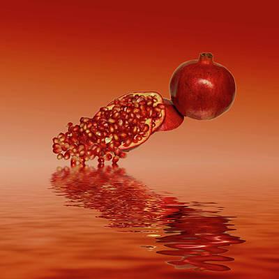 Pomegranate Superfood Fruit Art Print