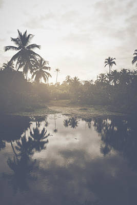 Lake Photograph - Pond In A Tropical Forest With Retro Style Filter by Brandon Bourdages