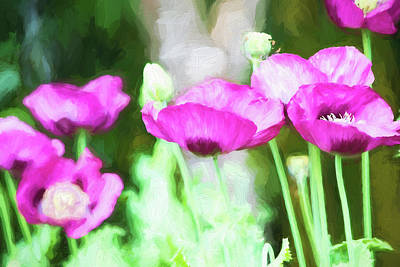 Painting - Poppies by Bonnie Bruno