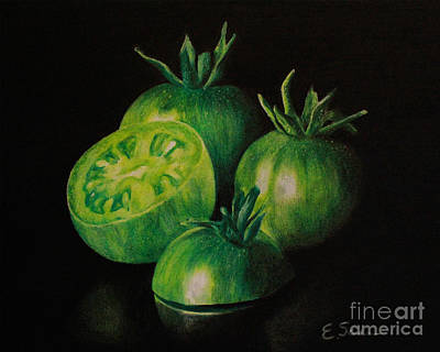 Tomatos Drawing - Pre-fried Green by Elizabeth Scism