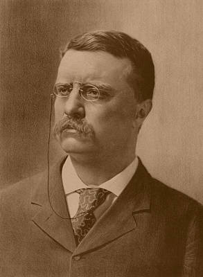 President Theodore Roosevelt Print by War Is Hell Store
