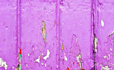 Messy Photograph - Purple Wood by Tom Gowanlock