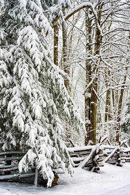 Print featuring the photograph Rail Fence And Snow by Thomas R Fletcher