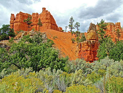 Photograph - Red Canyon In Dixie National Forest, Utah by Ruth Hager