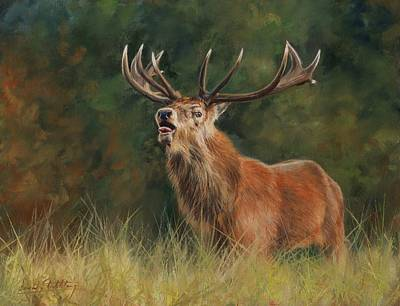 Bellows Painting - Red Deer Stag by David Stribbling
