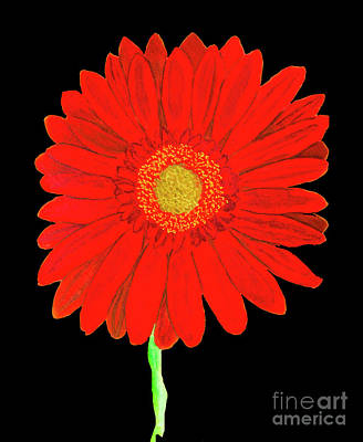 Painting - Red Gerbera On Yellow, Watercolor by Irina Afonskaya