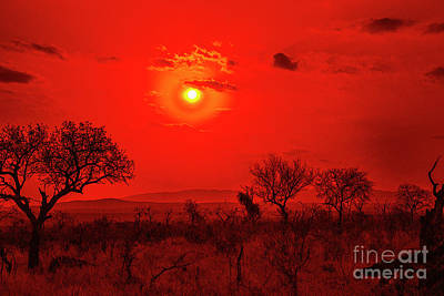Photograph - Red Sunset by Rick Bragan