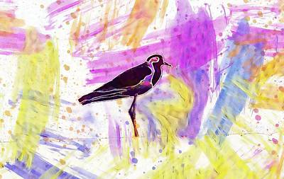 Lapwing Digital Art - Red Wattled Lapwing Vanellus Indicus  by PixBreak Art