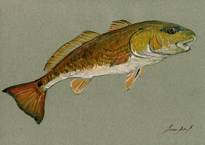 Fishing Painting - Redfish Painting by Juan  Bosco