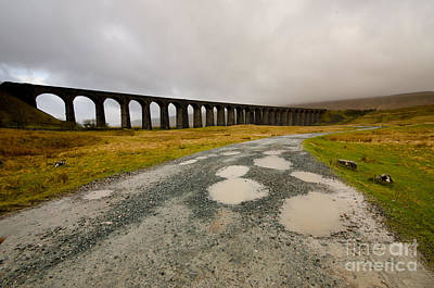 Ribblehead Viaduct Art Print by Nichola Denny