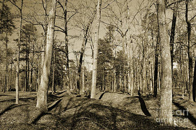 Photograph - Richmond National Battlefield Parks. by Ausra Huntington nee Paulauskaite