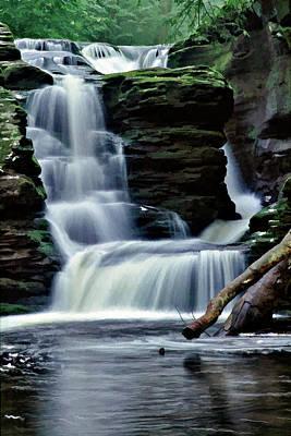 Photograph - Ricketts Glen Falls 021 by Scott McAllister