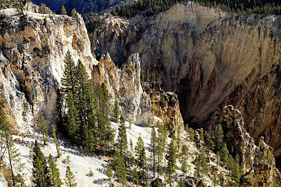 Photograph - Rock Formations Of Yellowstone Canyon by Shirley Mitchell