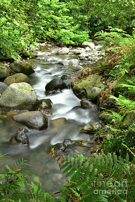 Landscape Photograph - Rocky River by Svetlana Sewell