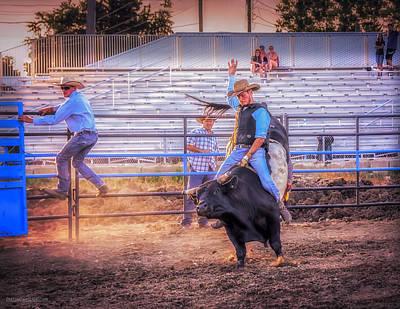 Photograph - Rodeo Rider by LeeAnn McLaneGoetz McLaneGoetzStudioLLCcom