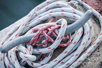 Photograph - Ropes On Cleat by Elena Elisseeva