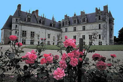 Photograph - Roses Bloom At Amboise by Carl Purcell