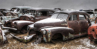 Photograph - Rusty by Craig Incardone