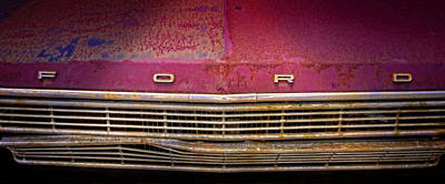 Photograph - Rusty by Jerry Golab