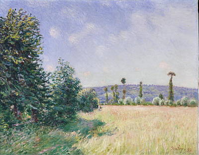 Painting - Sahurs Meadows In Morning Sun by Alfred Sisley