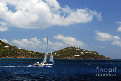 Photograph - Sail Boat by Gary Wonning