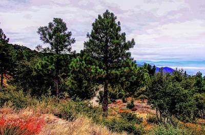 Photograph - San Jacinto Mountains by Joseph Hollingsworth
