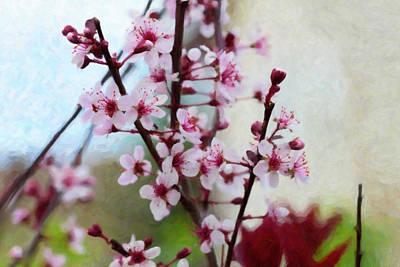Digital Art - Sand Cherry Blossoms by Donna L Munro