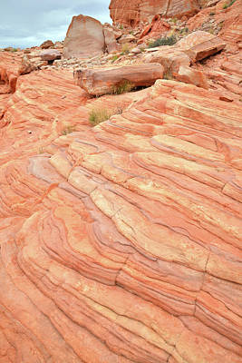 Photograph - Sandstone Swirls In Valley Of Fire by Ray Mathis