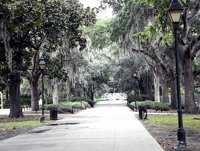 Savannah Art Print by Mindy Newman