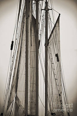 Schooner Pride Tall Ship Charleston Sc Print by Dustin K Ryan
