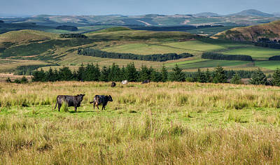Photograph - Scotland View From The English Borders by Jeremy Lavender Photography
