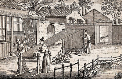 Fibre Art Photograph - Silk Manufacture In China, Engraving by Wellcome Images