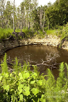 Sink Hole Photograph - Sinkhole, Florida by Inga Spence