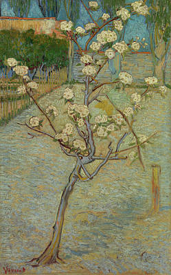 Pear Painting - Small Pear Tree In Blossom by Vincent van Gogh